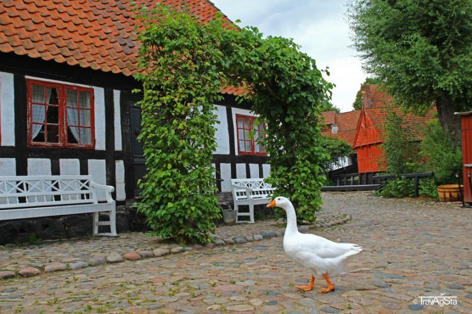 Den Gamble by, Aarhus, Denmark