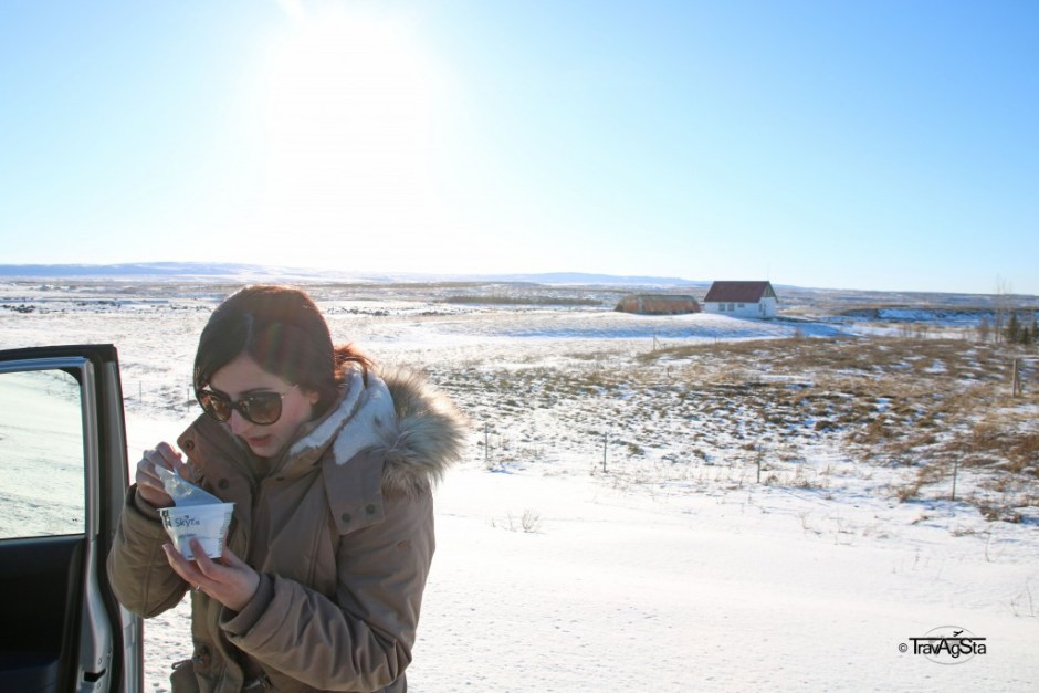 Skyr, Golden Circle, Iceland
