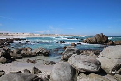 Tsaarbank, West Coast National Park, South Africa