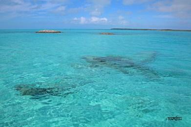Plane Wreck, Exuma Cays, The Bahamas