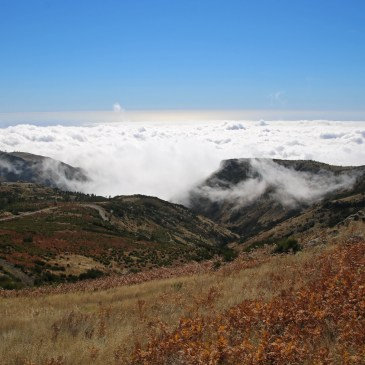 Madeira's inland!