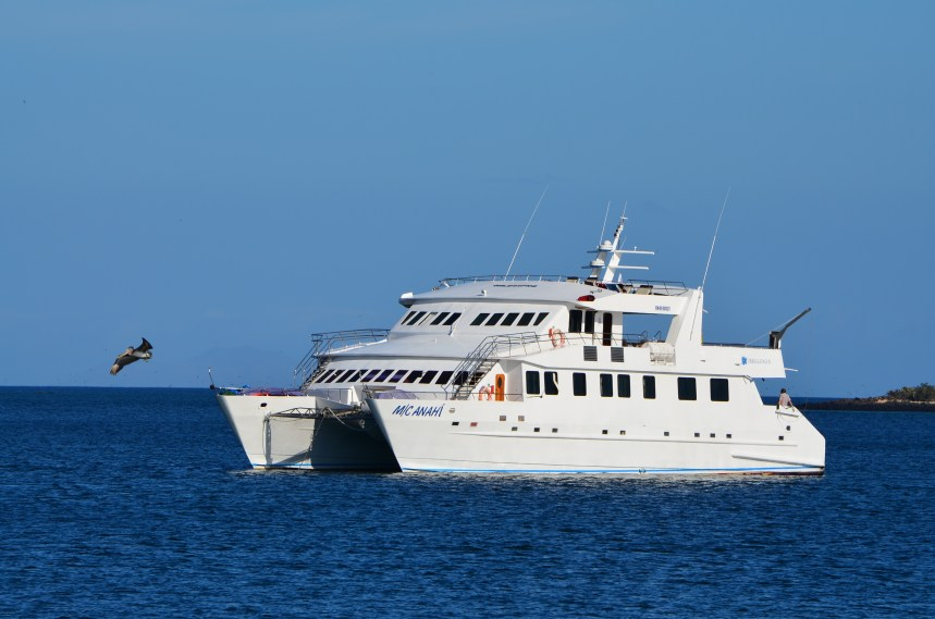 Plan a trip to Ecuador. Yacht Anahi Galapagos