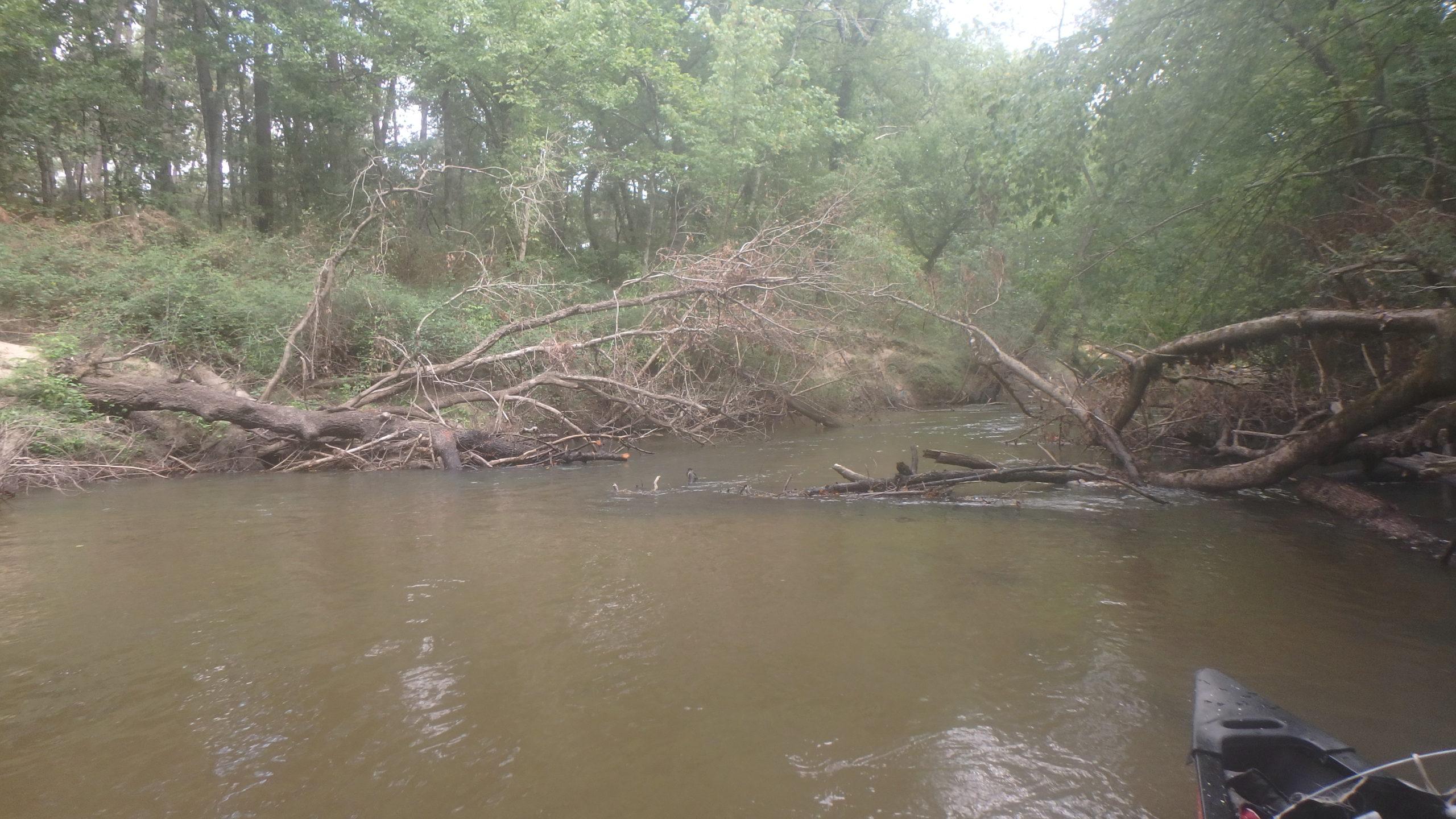 nettoyage rivière tempête