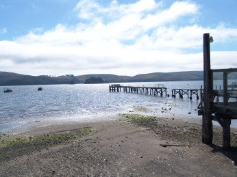 Bodega Bay - thank goodness without The Birds...