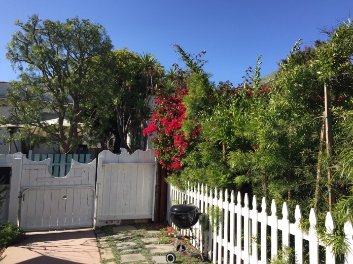 View from the front porch in Venice Beach