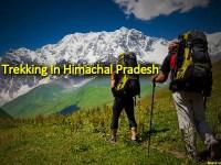 Trekking In Himachal Pradesh