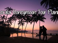 kerala honeymoon tour