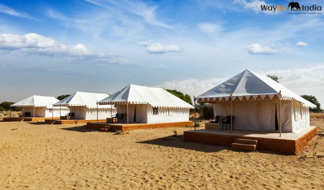 Camp over Sand Dunes at Osian