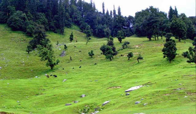 Top 10 Hill Stations In North India : Chopta Uttarakhand
