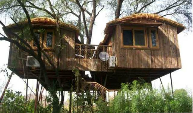 Top 7 Tree House Resorts in India