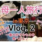 母一人 弾丸東京旅行Vlog.2 韓国食を食べる!#韓国食#韓国#東京#新大久保#一人旅