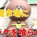 【裏韓国】日本語だけで楽しむ韓国グルメ旅行 パート2