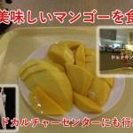 タイ旅2018その20 BACCを散策してからMBKで美味しいマンゴーを食べる話(バンコク)【無職旅】【旅行記】