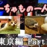 【一人旅】癒しを求めて東京へ!!! -Part1-