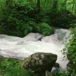 滋賀から北海道家族旅行:函館から青森へ渡ってからの奥入瀬渓流(阿修羅の流れ)