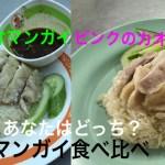 バンコクひとり旅 DAY2【タニの夏休み2018】有名な緑のカオマンガイ ピンクのカオマンガイ食べ比べ