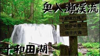 【旅行記】奥入瀬渓流を十和田湖までお散歩した