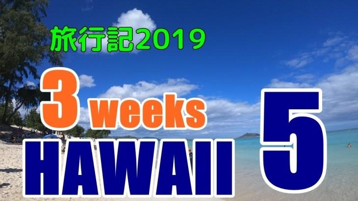 ハワイ旅行記2019#5:ドンキホーテ、ウォルマートでお土産物色と穴場、ウルフギャングパックエクスプレス