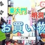 【韓国旅③】ぶらりお買い物巡り 東大門&明洞   Korea trip