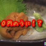 【ひとり旅】【感動】岩手で食べた300円のウニ・・・すごかった