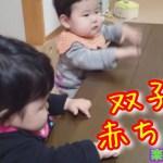 【ひとり旅】【感動】こんなん何回しても許しちゃうw・・・お世話になった長崎の先輩宅の双子の赤ちゃん