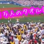 【ひとり旅】【感動】湘南乃風・・横浜スタジアムライブで3万人のタオル回し!圧巻すぎ