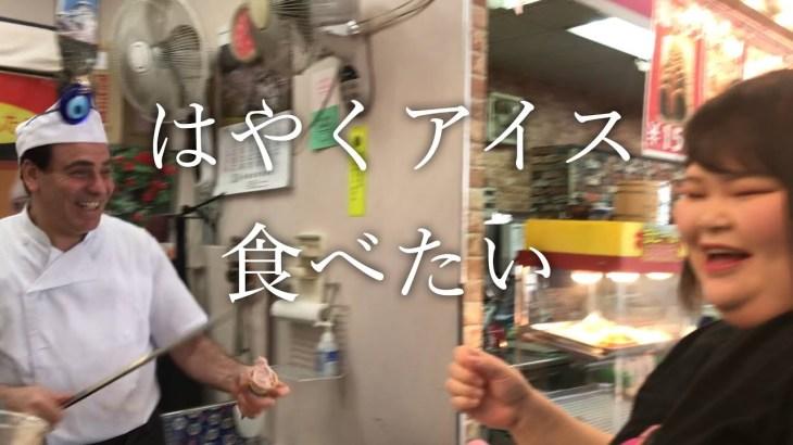 【絶品】日本にいるのにトルコ旅行気分!チェリーランドのトルコグルメを攻める!【山形県寒河江市】【しおたん】