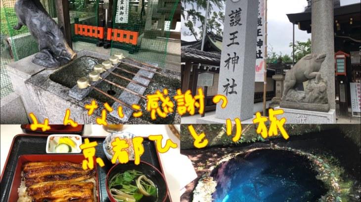 毎年恒例!埼玉から京都へのひとり旅!護王神社、下鴨神社、東寺、柿田川湧水公園、美容師への質問なんでも答えます!Sino代表 篠崎正