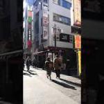 関東観光(16)