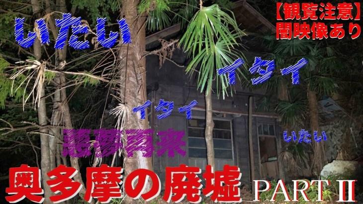 心霊 廃墟 一人旅【奥多摩の廃墟 ~悪夢再来~】東京 ♰ 4Kホラー