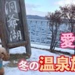 【北海道旅行】トイプードルまめと洞爺湖温泉「乃の風リゾート」へ行ってきた♪【犬】【dog】