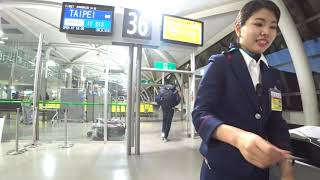 台湾旅行記 2019年2~3月 Trip in Taiwan【台湾「半健半病」之旅】 #001