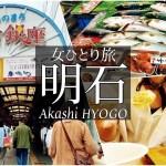 SUB【女一人旅Vlog】兵庫 明石の魚の棚商店街で買い物する休日vlog/観光・食べ歩き/旅行 動画/japan travel