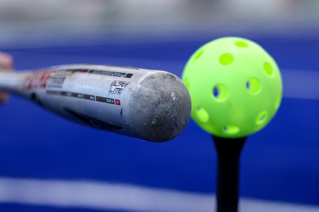 ウィッフルボール ルール 野球 バット 値段 変化球