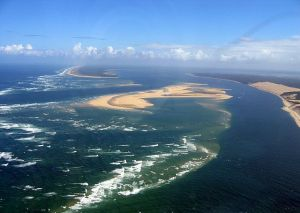 Cap ferret from the sky