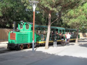 cap ferret train