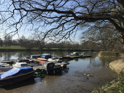 Boats moored at Hammerton's Ferry