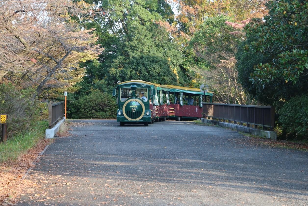 国営昭和記念公園 周遊列車