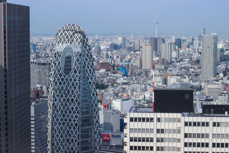 tokyo skyline (1 of 1)