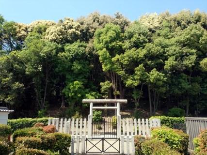 塚穴古墳(来目皇子墓)