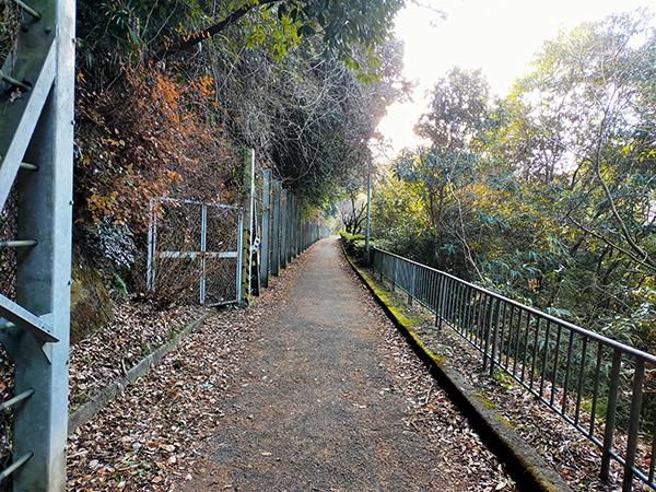蟹井神社への道