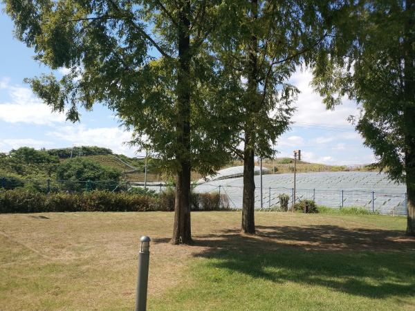 グレープヒルスポーツ公園内にある、ふれ愛広場キャンプのサイト