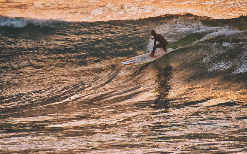 surfer on a longboard is cutting big wave at the sunset the water is gold in morocco imsouane cathedral
