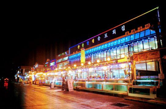 seafood restaurants lining gyeongpo beach