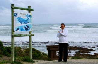 No luck on Hermanus' cliffs