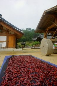 Korean chillis