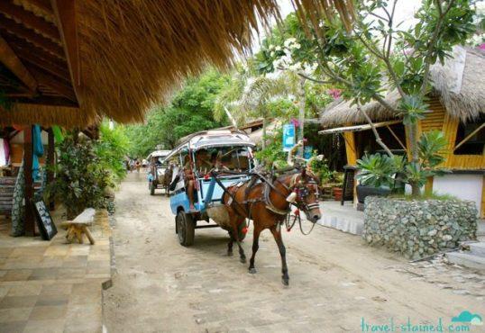 Transport by cidomo