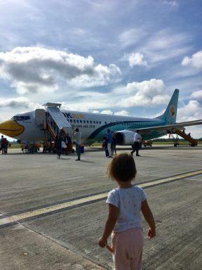 The plane looks like a bird!