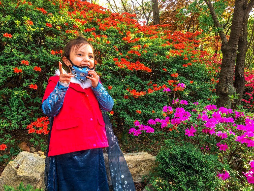 seokchon lake in spring
