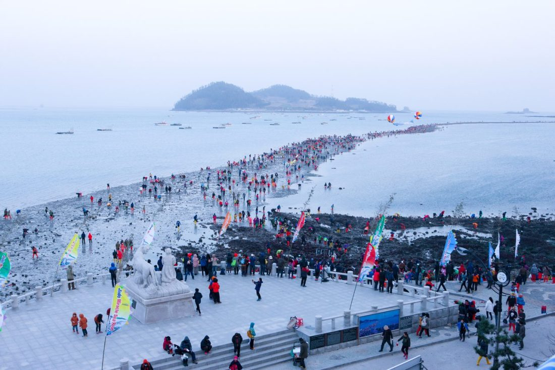 jindo miracle sea festival in spring